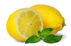 Demi et entiers citrons avec la menthe Images stock