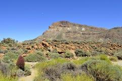 Demi-lune au-dessus de parc national de Teide de bâti Images libres de droits