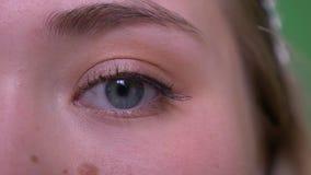 Demi pousse de visage de plan rapproch? de jeune visage femelle caucasien attrayant avec des yeux regardant la cam?ra banque de vidéos