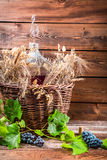 Demijohn full of red wine in the cellar. On old wooden table Stock Photo