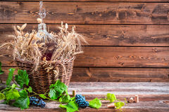 Demijohn of red wine in the cellar. On old wooden table Stock Photography