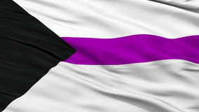 Demisexual Close Up Waving Flag. Demisexual Flag, Close Up Realistic 3D Animation, Seamless Loop - 10 Seconds Long stock video