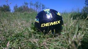 Demix - nehmen Sie alles vom Leben lizenzfreies stockfoto