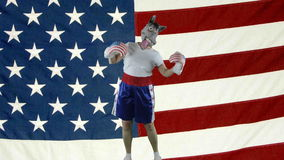 Democrat party punching self against American Flag stock footage