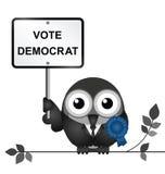 Democrat Politician Stock Images