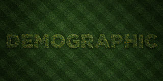 DEMOGRAPHIC - fresh Grass letters with flowers and dandelions - 3D rendered royalty free stock image. Can be used for online banner ads and direct mailers Royalty Free Stock Image