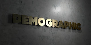 Demographic - Gold text on black background - 3D rendered royalty free stock picture. This image can be used for an online website banner ad or a print Royalty Free Stock Images