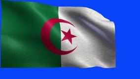 Demokratische Volksrepublik Algerien, Flagge von Algerien - nahtlose SCHLEIFE stock footage