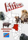 Demokratyczna republika Kongo mapa i flaga z zwierzętami Obraz Royalty Free