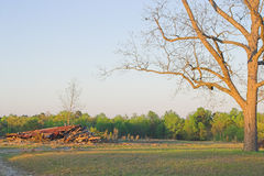 Demolished home on farm Stock Photography