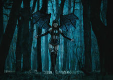 A demon with bat wings Stock Photography