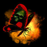 Demon Butterfly. 3D render of a demon butterfly with flames Stock Photo