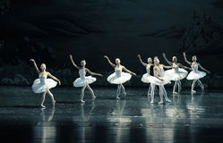 The demon curse the swans-The Swan Lakeside-ballet Swan Lake Stock Photography