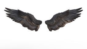 Demon Wings. 3d Illustration Demon Wings, Black Wing Plumage Isolated on White Background Royalty Free Stock Photos