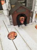 Demonhund arkivfoto