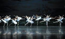 Demoni nascosti nel lago swan di Gruppo-balletto del cigno immagini stock libere da diritti
