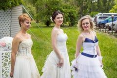 Demonstração da coleção do vestido de casamento Imagens de Stock