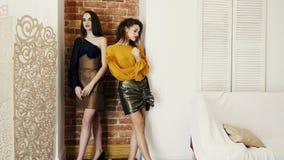 Demonstração da coleção, jovens mulheres com pés longos na roupa elegante que levanta no fundo da parede de tijolo no estúdio vídeos de arquivo