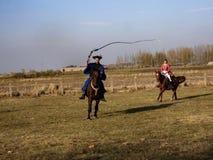 demonstração da escola de equitação, Hortobagy, Hungria fotos de stock royalty free