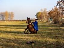 demonstração da escola de equitação, Hortobagy, Hungria fotografia de stock royalty free