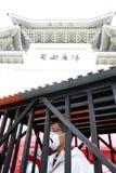 Demonstração, movimento da morango selvagem em Formosa Foto de Stock