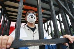 Demonstração, movimento da morango selvagem em Formosa Fotografia de Stock