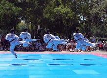 Demonstração pública das artes marciais de Tae Kwon Do/Taekwondo no parque de Rengstorff em Mountain View Califórnia em 2015 imagens de stock