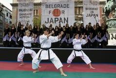 demonstraci karate kata Obraz Stock