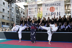demonstraci walki karate Zdjęcia Stock