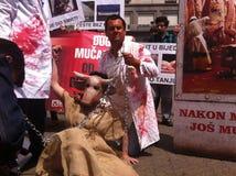 demonstraci zwierzęca opieka społeczna Obraz Royalty Free