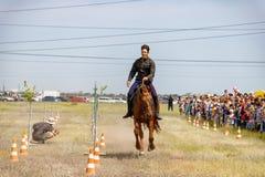 Demonstracja Kozacki equestrian klub sportowy z akrobatycznymi elementami i sztuczkami obraz stock