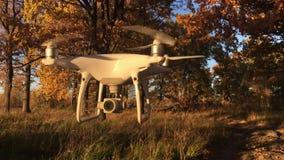 Demonstracja lota trutnia DJI fantom 4 Pro w jesieni lasowy Moskwa, Rosja zbiory wideo