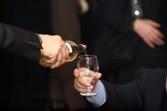 Demonstrador do vinho Fotografia de Stock