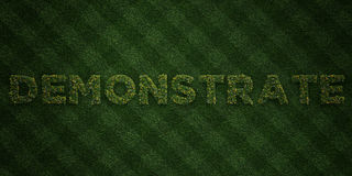 DEMONSTRATE - fresh Grass letters with flowers and dandelions - 3D rendered royalty free stock image. Can be used for online banner ads and direct mailers Royalty Free Stock Images