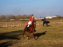 demonstratie van Paardmanege, Hortobagy, Hongarije stock foto's