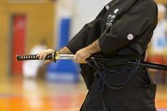 Demonstration av japanska traditionella kampsporter Fotografering för Bildbyråer