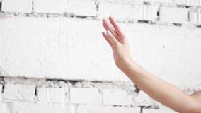 Demonstration av slät balettrörelse av handen för kvinna` s på vit väggbakgrund stock video