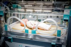 Demonstration of baby incubator royalty free stock images
