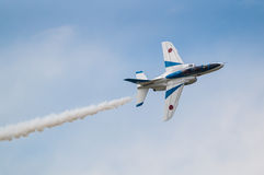 Demonstration Flights of Blue Impulse royalty free stock image