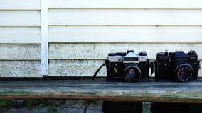 Demonstration och sätta någon yrkesmässig ` för zenit för kameramärkes` för att visa stock video