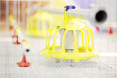 Demonstration of plastic chicken feeders in industrial incubator Royalty Free Stock Photos
