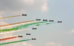 Demonstrative performance of aerobatic team Stock Images