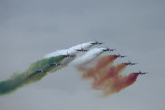 Demonstrative performance of aerobatic team Stock Images