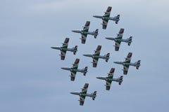 Demonstrative performance of aerobatic team Royalty Free Stock Image
