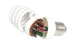 demontująca oszczędnościowa lampa Zdjęcie Royalty Free