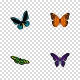 Demophoon realista, pavo real verde, Polyommatus Icarus And Other Vector Elements Sistema de símbolos realistas de la mariposa stock de ilustración
