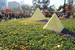 Demostración de flor de Hong-Kong 2012 Imagen de archivo libre de regalías
