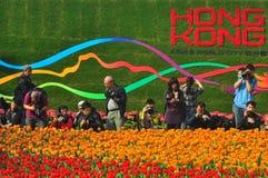Demostración de flor del int'l de Hong-Kong 2011 Fotos de archivo libres de regalías
