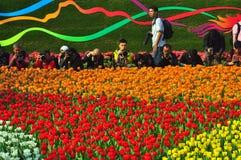 Demostración de flor del int'l de Hong-Kong 2011 Fotografía de archivo
