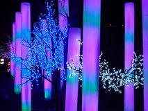 Demostración de la linterna en Chengdu, China Fotos de archivo libres de regalías